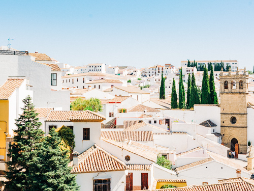 Ronda Views of Malaga Wedding Photographer
